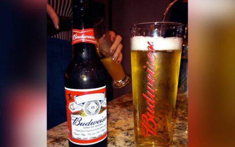 Budweiser Premium King Of Beers